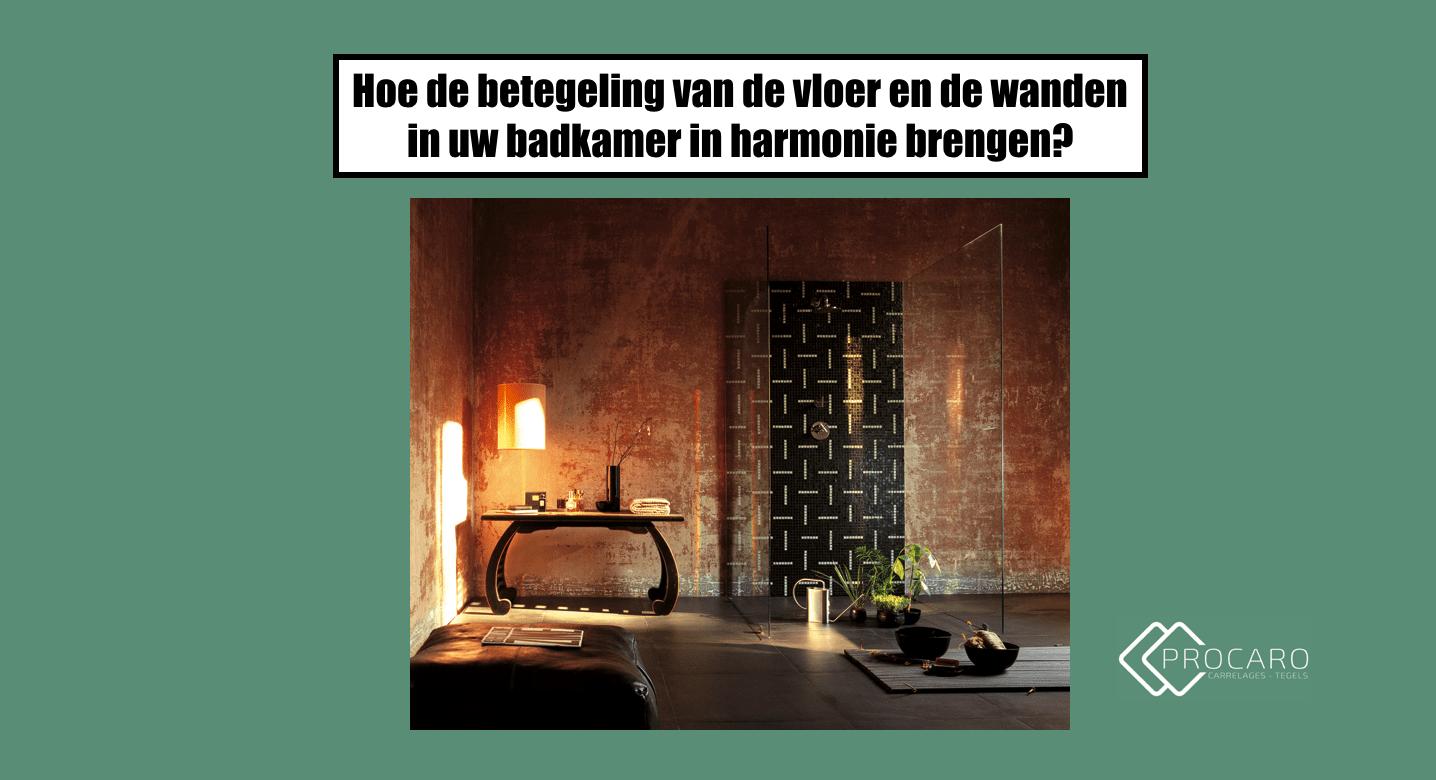 betegeling-vloer-wanden-badkamer