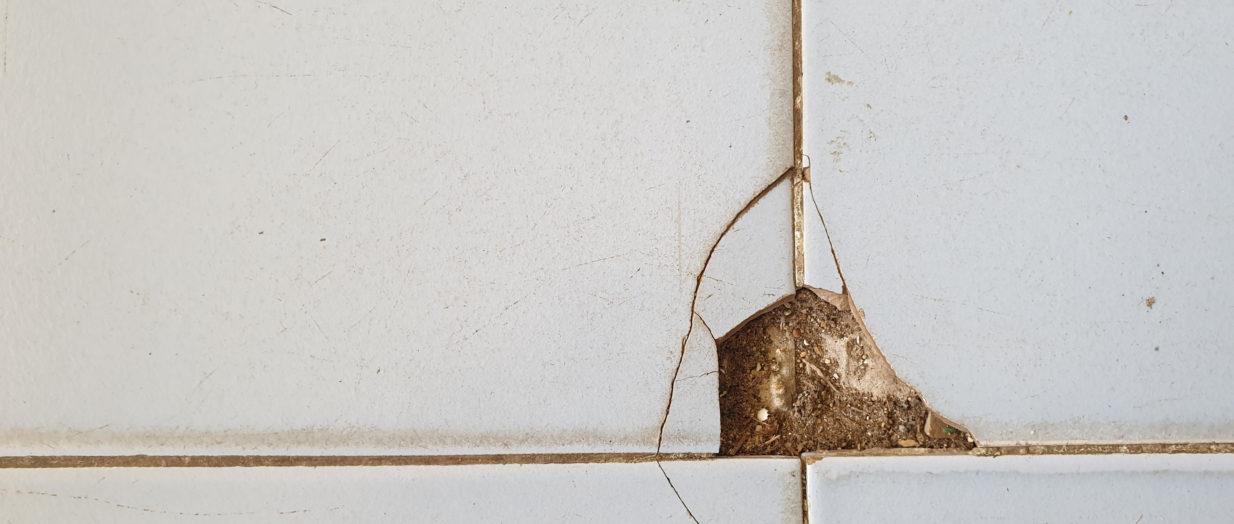 Éclat sur un carrelage : comment procéder à sa réparation ?